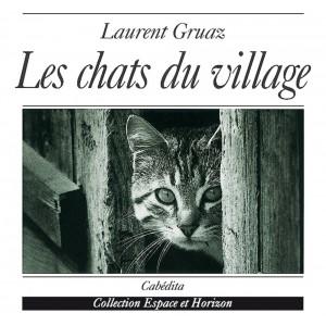 LES CHATS DU VILLAGE/11D