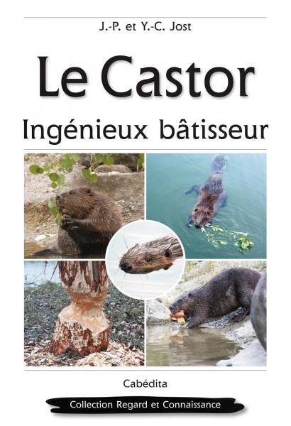 LE CASTOR - INGÊNIEUX BÂTISSEUR